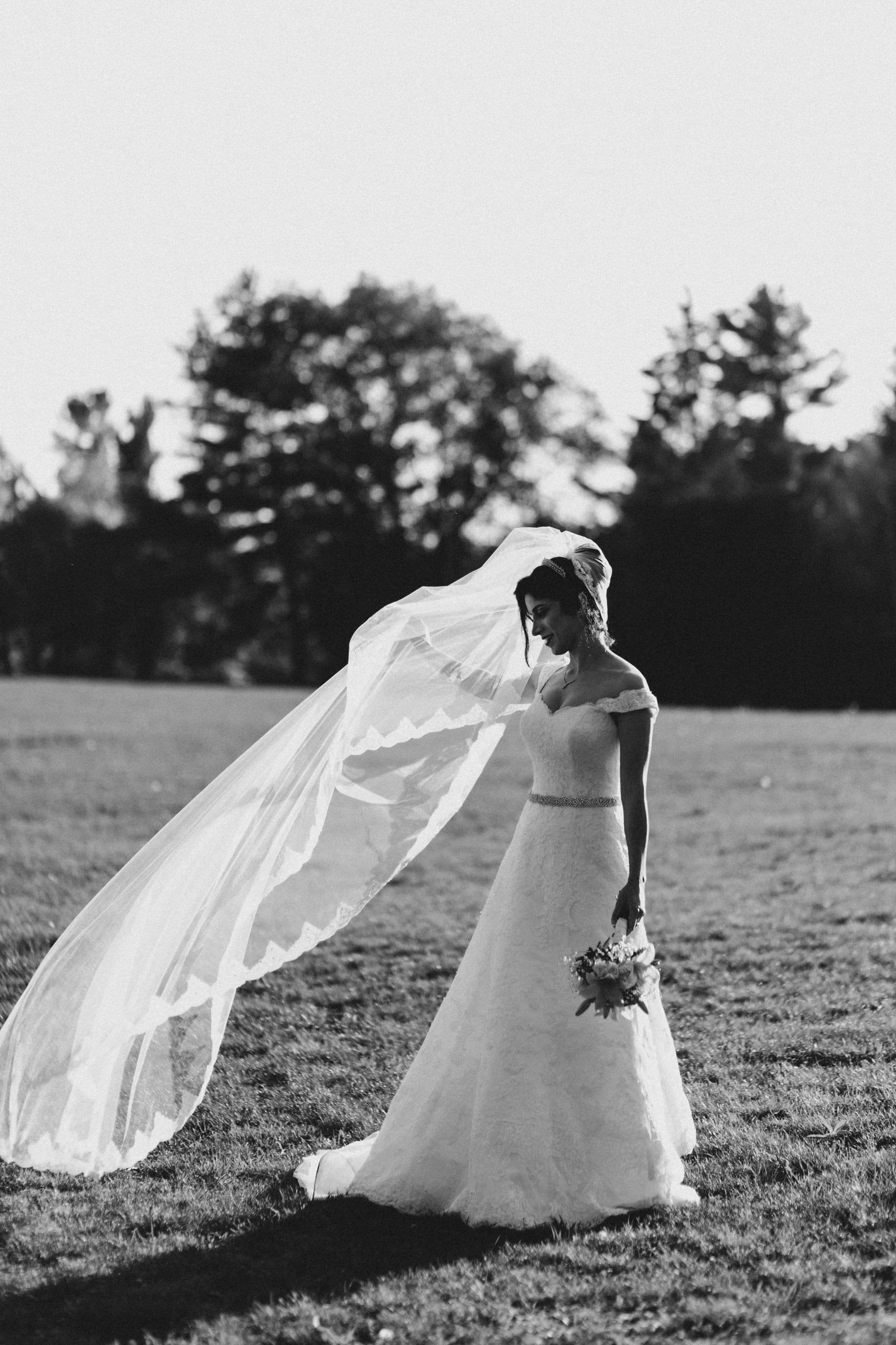 Bride and Cathedral Veil - Intimate Wedding Mackenzie King Estate